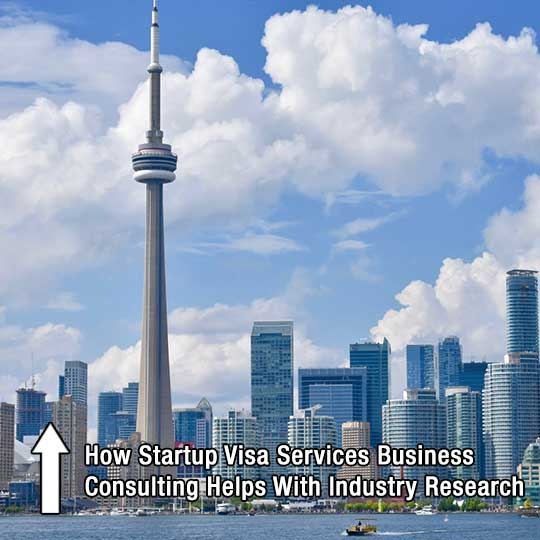 How Startup Visa Services Business Consulting Helps With Industry Research