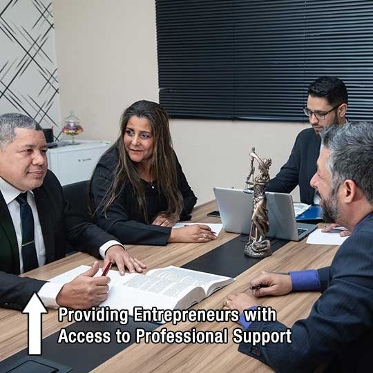 Providing Entrepreneurs with Access to Professional Support