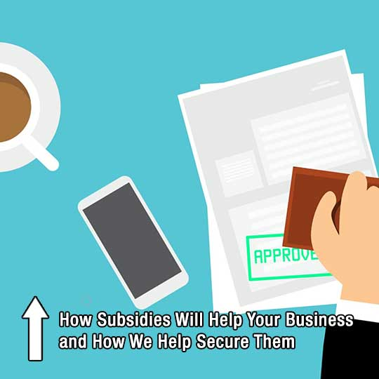 How Subsidies Will Help Your Business and How We Help Secure Them