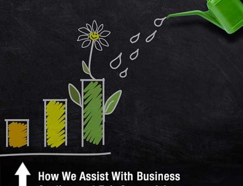 How We Assist With Business Scaling and Exit Strategizing